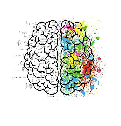 Brain with space ELISA RIVA.jpg