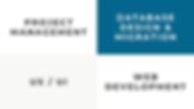 Services: Project Management, Database Design and Migration, UX/UI, Web Development