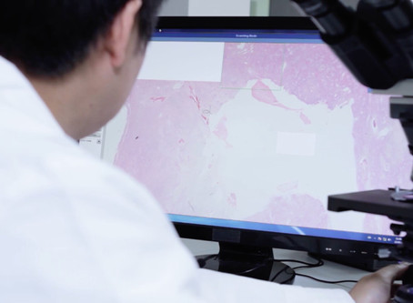 Digital pathology implementation: Key lessons for success and a new method of interactive imaging