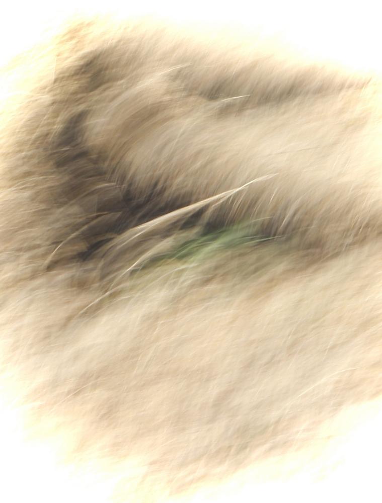 Keith Hammett Abstract