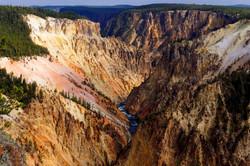 Allan Bigham Yellowstone Grand Cany