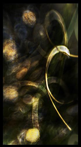 Transfigured elements of nature