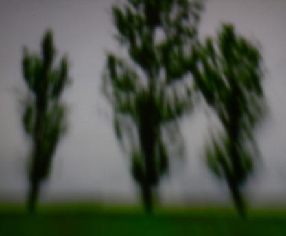 3 Sentinels