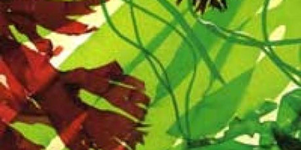 Masque et Sel de Bain aux algues et actifs marins : Fête de la Bretagne
