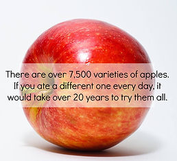 mueller apples