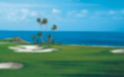 Golf Background2.jpg
