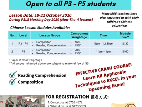 PSLE Marking Day Crash Course 2020 评卷日华文冲刺班