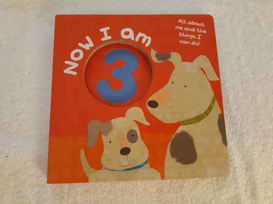 Now I Am 3