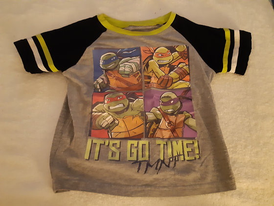 Ninja Turtle Grey