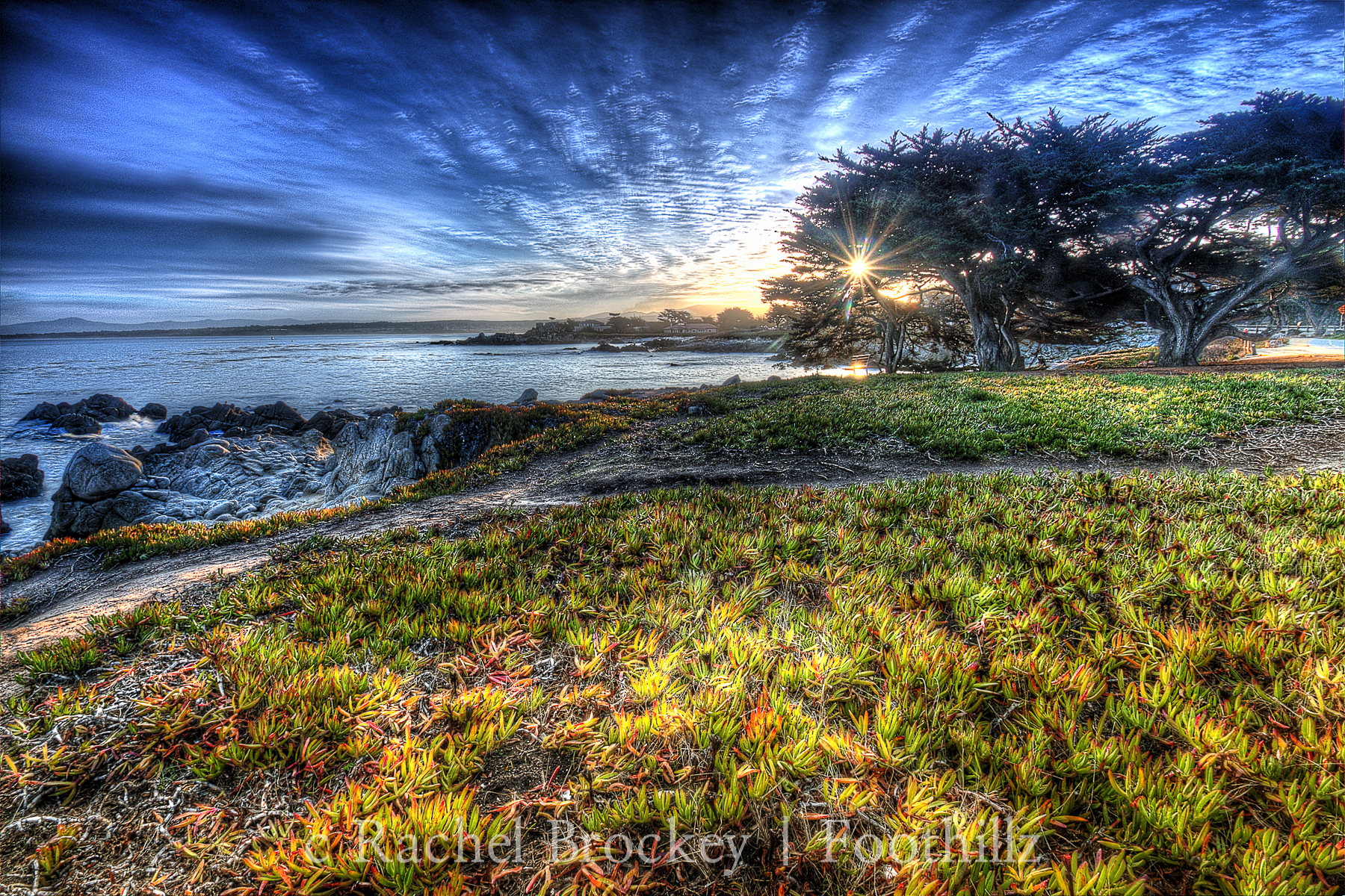 Sunrise 2 in Monterey copy.jpg