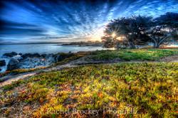 Sunrise 2 in Monterey copy.jpg