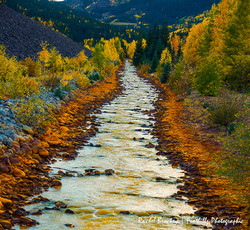 Uncomprehre River Fall.jpg