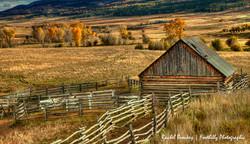 Ohio's Ranch Hose.jpg