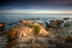 Monterey Mounds.jpg