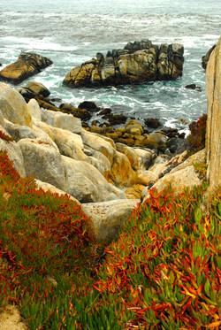 Ghost Tree Boulders sm.jpg