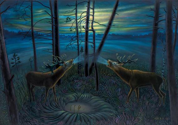 Briežu bauris Slīterē. Deer Bellow In Slītere.