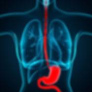 Esophagus Disorders Aschalasia