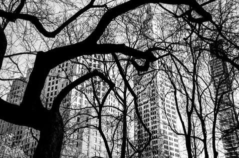 New York City 2013