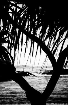 Hawaii 2013