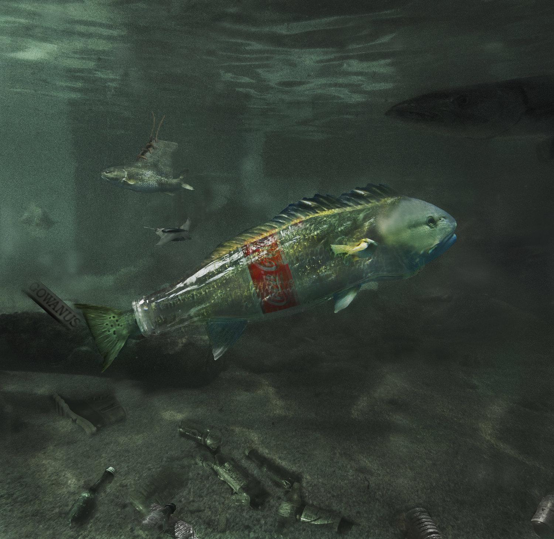 Fish: Bottle Boot Stingray