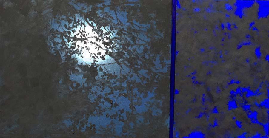 """Moonlight Through Trees"""
