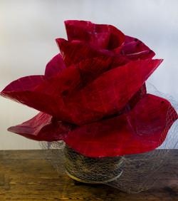 Read Roses 1