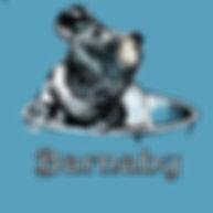 barnaby_design_proof.jpg