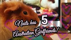 nails5girlfriends.jpg