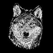 wolf_face.jpg