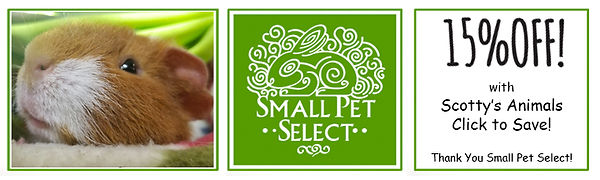 smallpetselectcoupon01.jpg