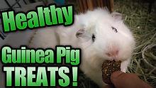 healthytreatsthumb.jpg
