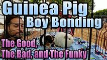 bonding_boysthumb.jpg