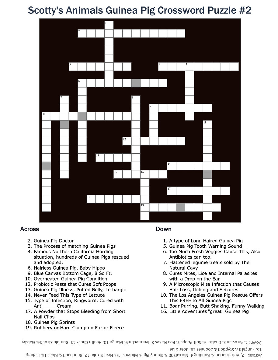 Scotty's Animals Guinea Pig Crossword Pu