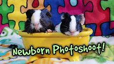 ewbornphotoThumb.jpg