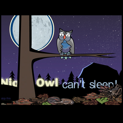 NightOwlL