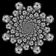 wolf_fractal.jpg