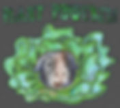 plantpowered_mike1.jpg