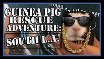rescueadventurethumb2.jpg