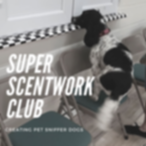 SUPER SCENTWORK CLUB.png