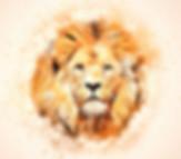 lion-2329097_640_edited.jpg