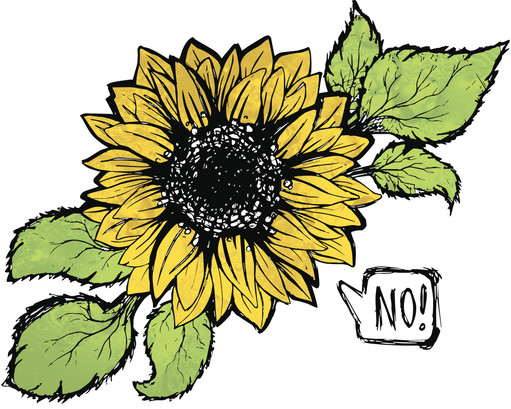 sunflowers Ain't Pretty