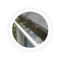 Gutter cleaning in Golden can help you avoid water leaks in your roof.