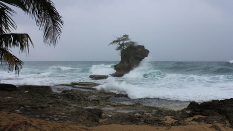 Plage côte Caraïbe