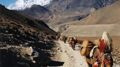 Tour des Annapurnas - Muktinat