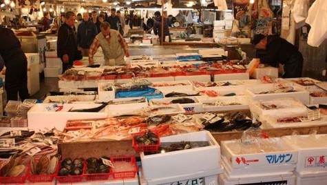 Marché aux poissons - Tokyo