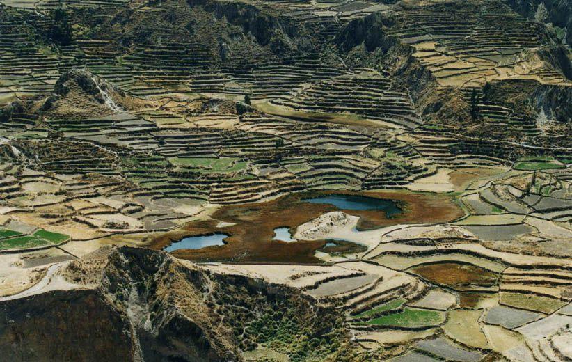 Cultures - Canyon de Colca
