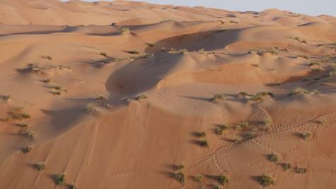 Le désert d'Oman