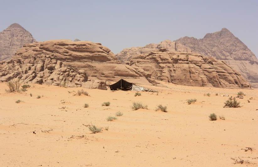 Wadi Rum Tente Bedouine