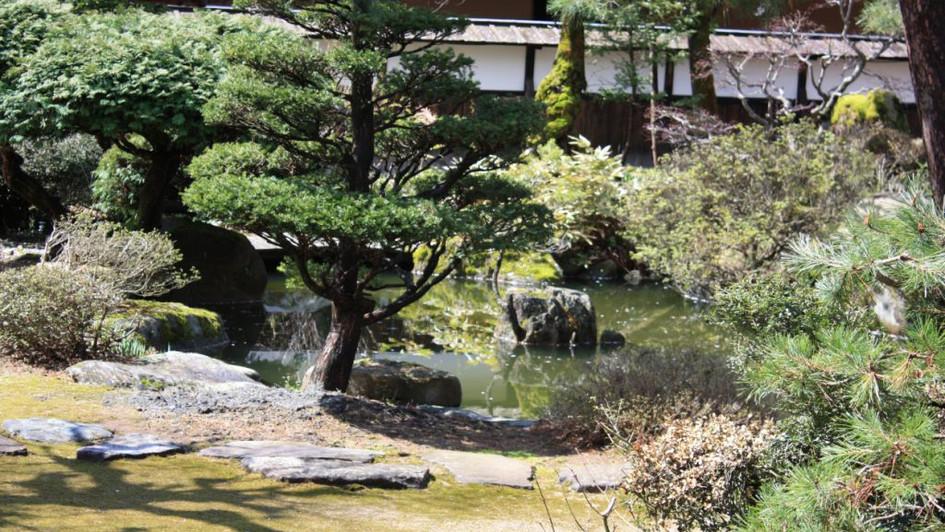 Jardin japonais - Kyoto