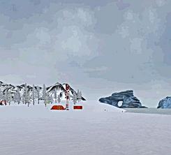 Polar 1.png